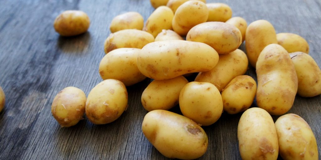 Potatoes are incredibly versatile and tasty…